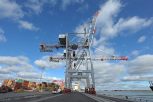 Liebherr continues Canada success with STS and RMG order
