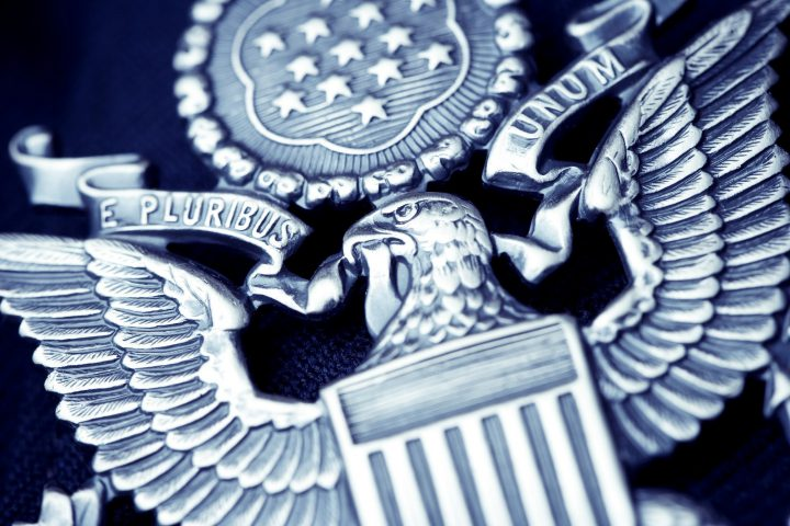detail of an american government pin. E Pluribus Unum.
