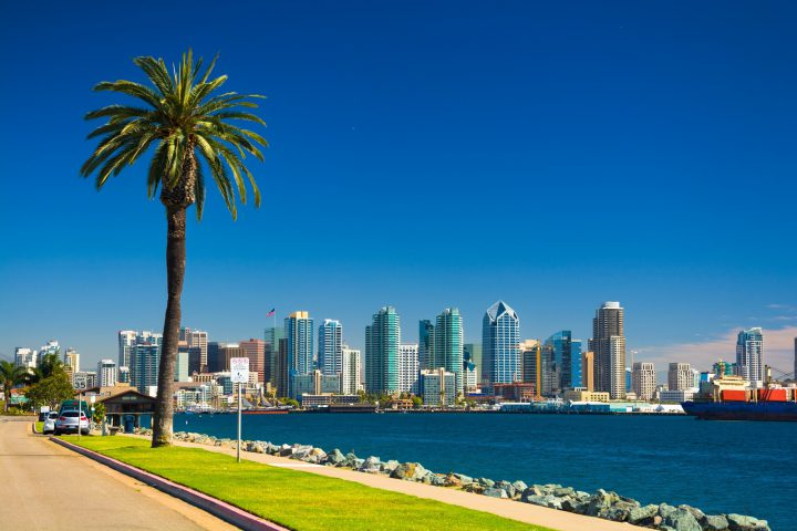 Downtown San Diego skyline view with the San Diego Bay, a waterfront walkway, and a palm tree in the foreground, and a nearly clear deep blue sky in the background.